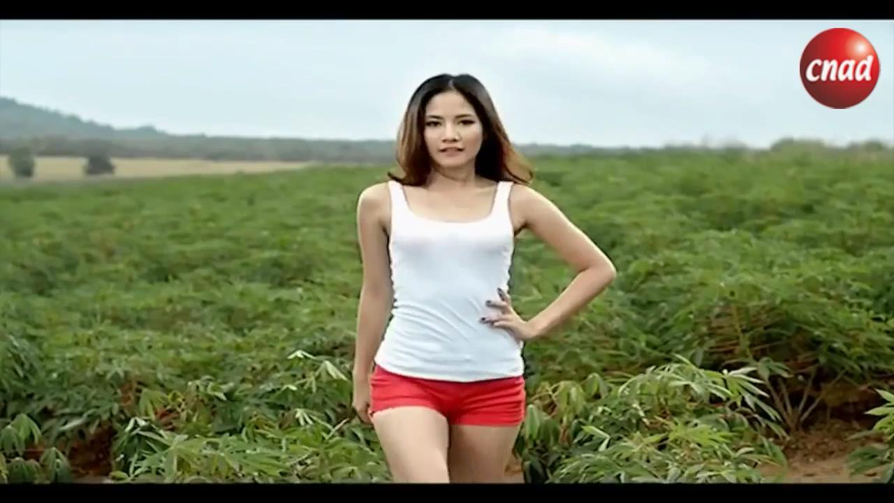 泰国肥料广告