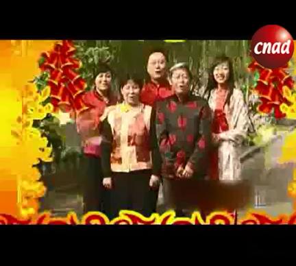 虎到模式春节拜年祝福电视医疗广告