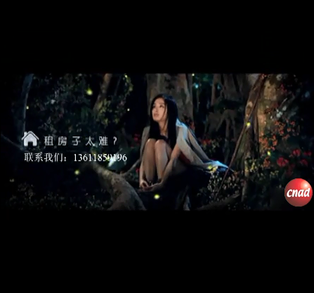 58同城广告上海版